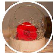 decoracion-floristeria-curcuma-estella